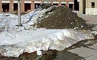 Plant materials in this project must tolerate exposure to stockpiles of salt-laden snow for several months each winter.
