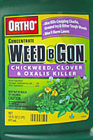 Orthos Weed B Gon Chickweed, Clover and Oxalis Killer is effective against groundivy when applied in the fall.