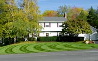 Who wouldn't like to have a lawn that looks like this?