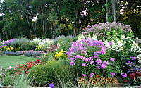 Here's a look at my college roommate's perennial border in its summer glory just outside of Washington, D.C..