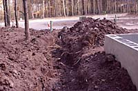 Trenching for utilities is bound to damage the root system of nearby trees!