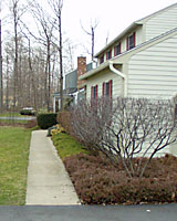 Very few evergreens stay small enough to fit between the front walk and foundation of many homes.