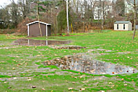 It will always be difficult to grow a really nice lawn in areas wherer water sits for a long time after a heavy rain.